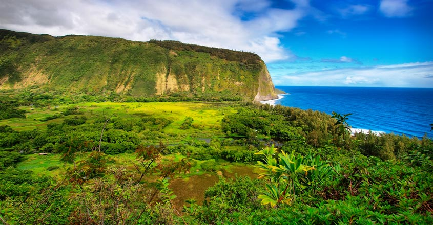 Hawaii waives quarantine for travellers with negative COVID-19 result from August 1