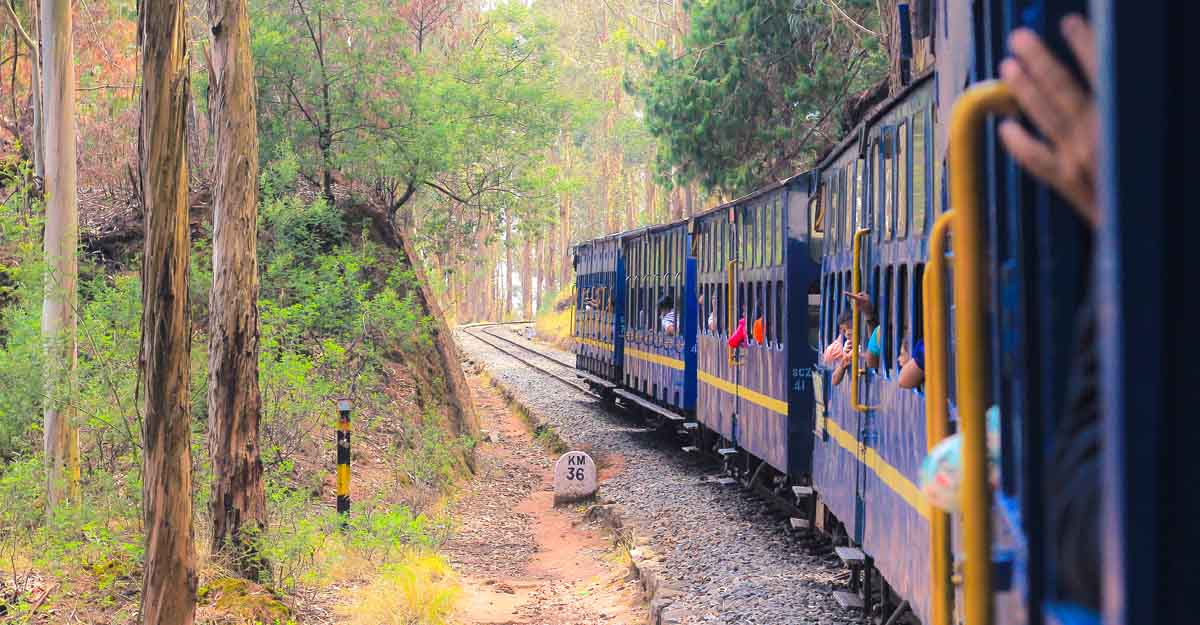 Things are looking up as Ooty starts to welcome tourists