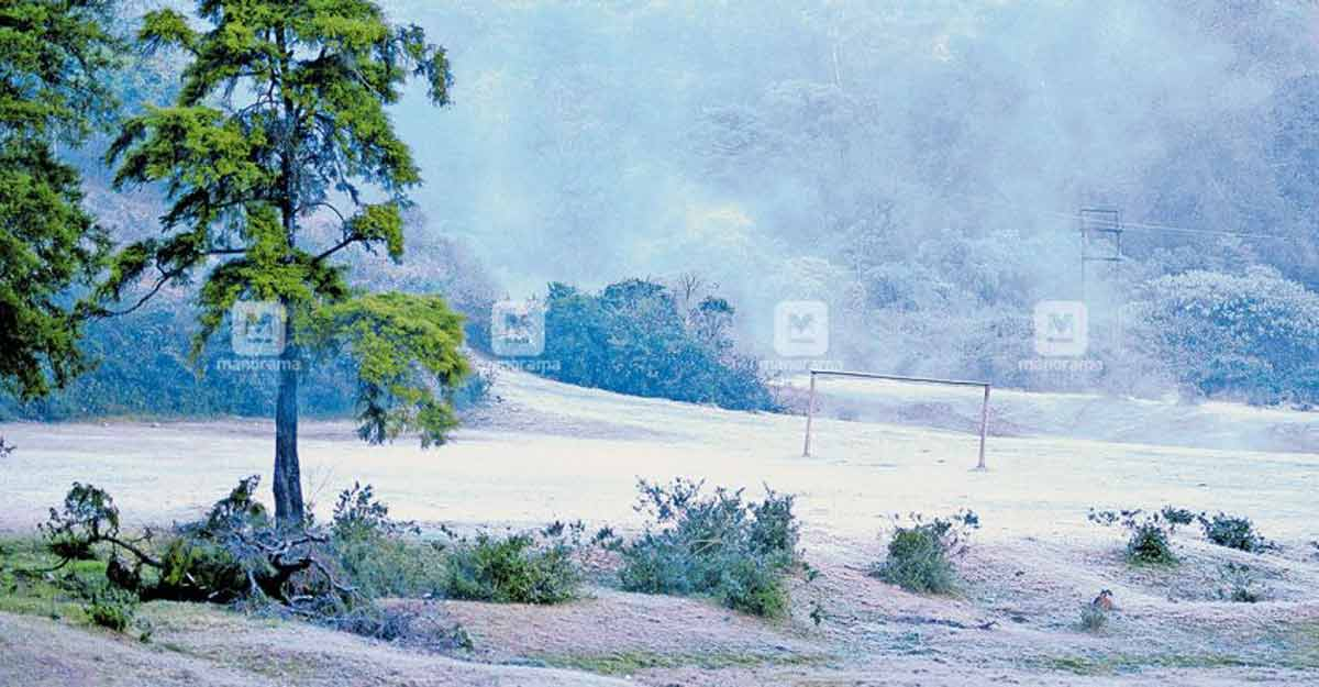Severe cold blankets Munnar with frost