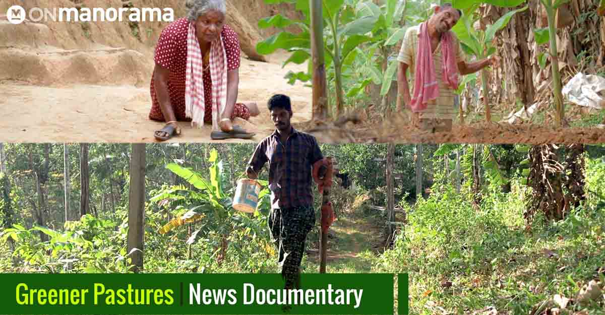 Greener Pastures: Three unique farmers, one story | News Documentary