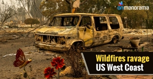 Wildfires in the western US gut forests, towns alike