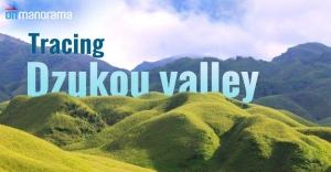Exploring the lush Dzukou valley in Northeast India