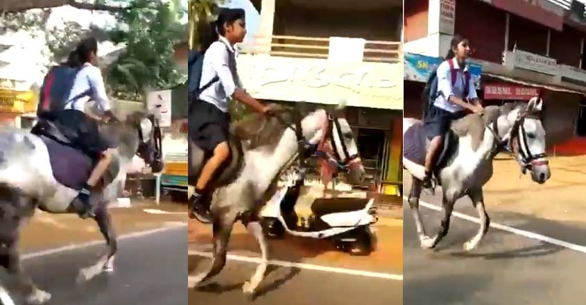 Horses are her passion for this Kerala teenage schoolgirl