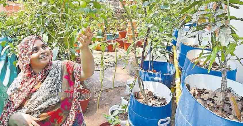 This organic garden thrives on Facebook inputs